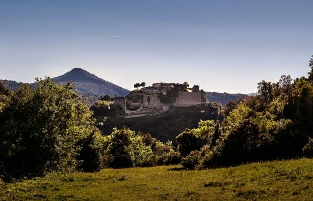 L'autre spécificité paysagère du château de Termes est son environnement fortement boisé, caractérisé par une végétation méditerranéenne typique.