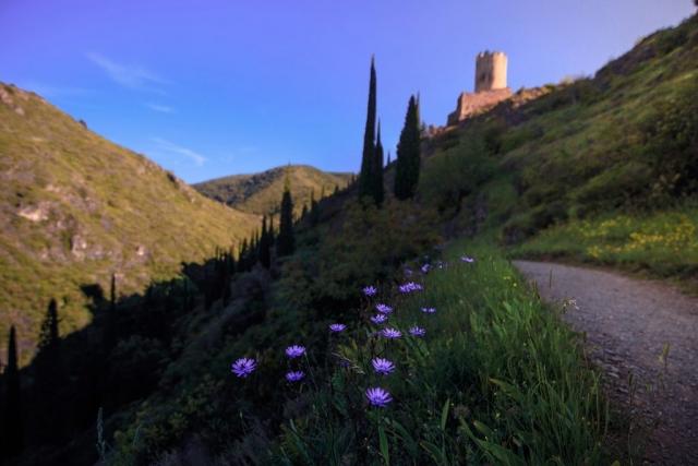 Le chemin vers les châteaux de Lastours