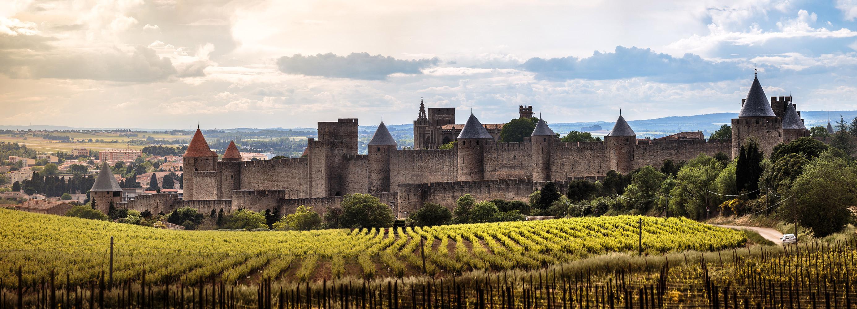 Vue des remparts de la cité de Carcassonne depuis les vignes